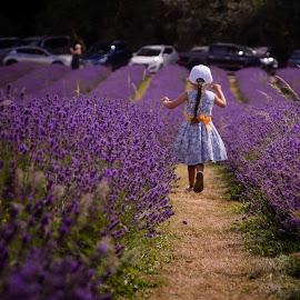Skipping in the Lavender by Mark Freeman - Babies & Children Children Candids ( adventure, purple, purple flowers, joy, summer, fun, flowers, lavender, skipping, flower,  )