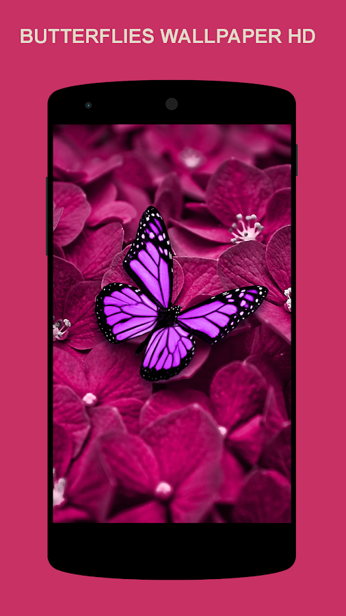 Beautiful Wallpaper - Android Apps on Google Play
