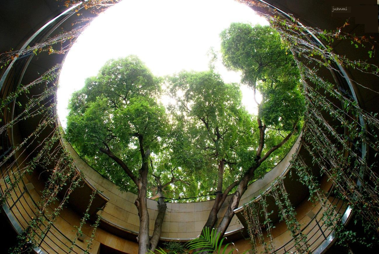 http://fotos.lasprovincias.es/201107/dsc07442.jpg