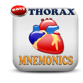 Thorax Medical Mnemonics