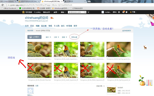 Chrome For Qzone Photo
