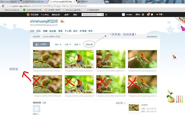Chrome For Qzone Photo