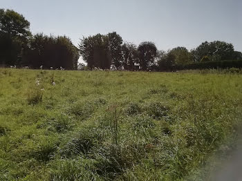 terrain à Ivergny (62)