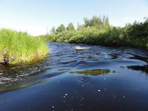 Photo: Синий бархат воды. Сизимъеган.