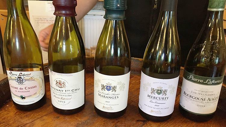 Wine tasting at Le Clos de Vougeot Winery.