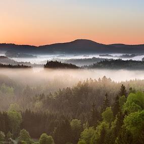 Spring of Cross Hill by Evžen Takač - Landscapes Sunsets & Sunrises ( fog, czech republic, sunrise, spring, national park czech switzerland )