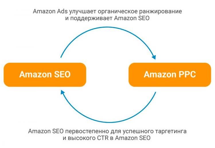СЕО Amazon