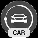 NRG Player Car Skin
