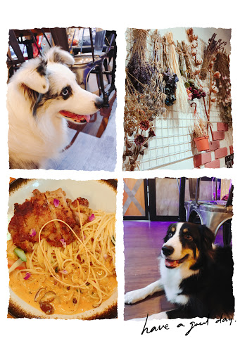 店內環境氣氛佳,見到三隻狗狗超可愛的, 餐點的份量也很實在,很值得再光顧的食.光機