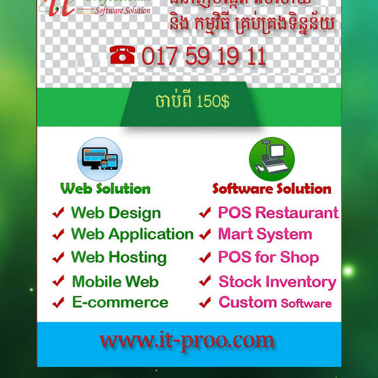 IT Professional Software Solution - Software Company in Siem