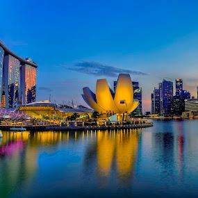 Helix Bridge & Marina Bay, Singapore by David Chew - City,  Street & Park  Skylines ( marina bay sands, landscape, singapore, marina bay )