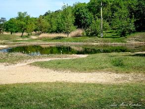 Photo: 2009.05.08 - Aleea Lacurilor,  Lacul Privighetorii