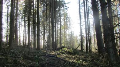 Photo: Blick nach rechts
