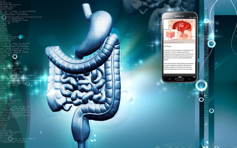 Großartig Interaktive Anatomie Und Physiologie Quiz Ideen ...
