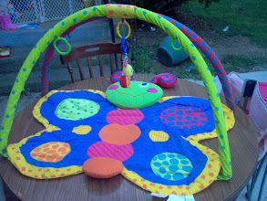 Photo: Butterfly Play Mat $10(local pickup) + actual shipping