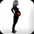 Pregnancy watcher widget