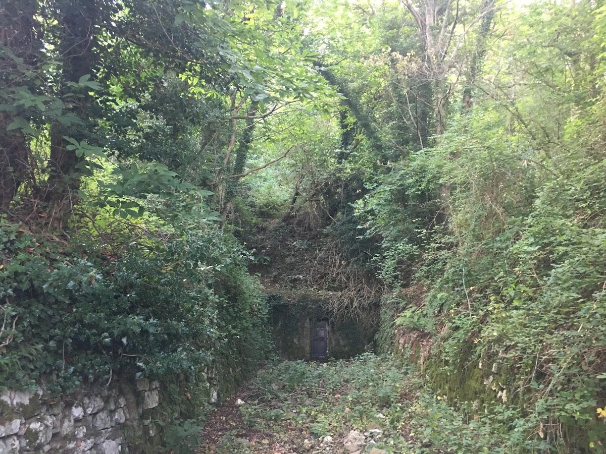 Fonte nella riserva naturale Poggio all'Olmo
