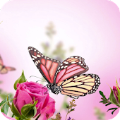 Pink Butterfly Flower Theme
