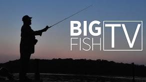 Big Fish TV thumbnail