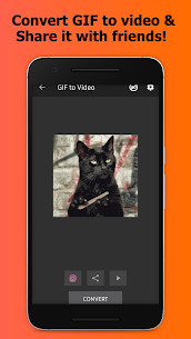 GIF to Video apk download 4