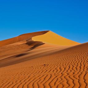 Coral Pink Sand Dunes by Shane Moss - Landscapes Deserts ( sand, desert, sand dune, ripple, landscape )