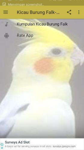 Download Kicau Burung Falk Parkit Apk Latest Version App By