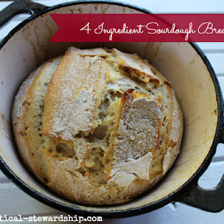 Sourdough Starter Without Yeast Recipes