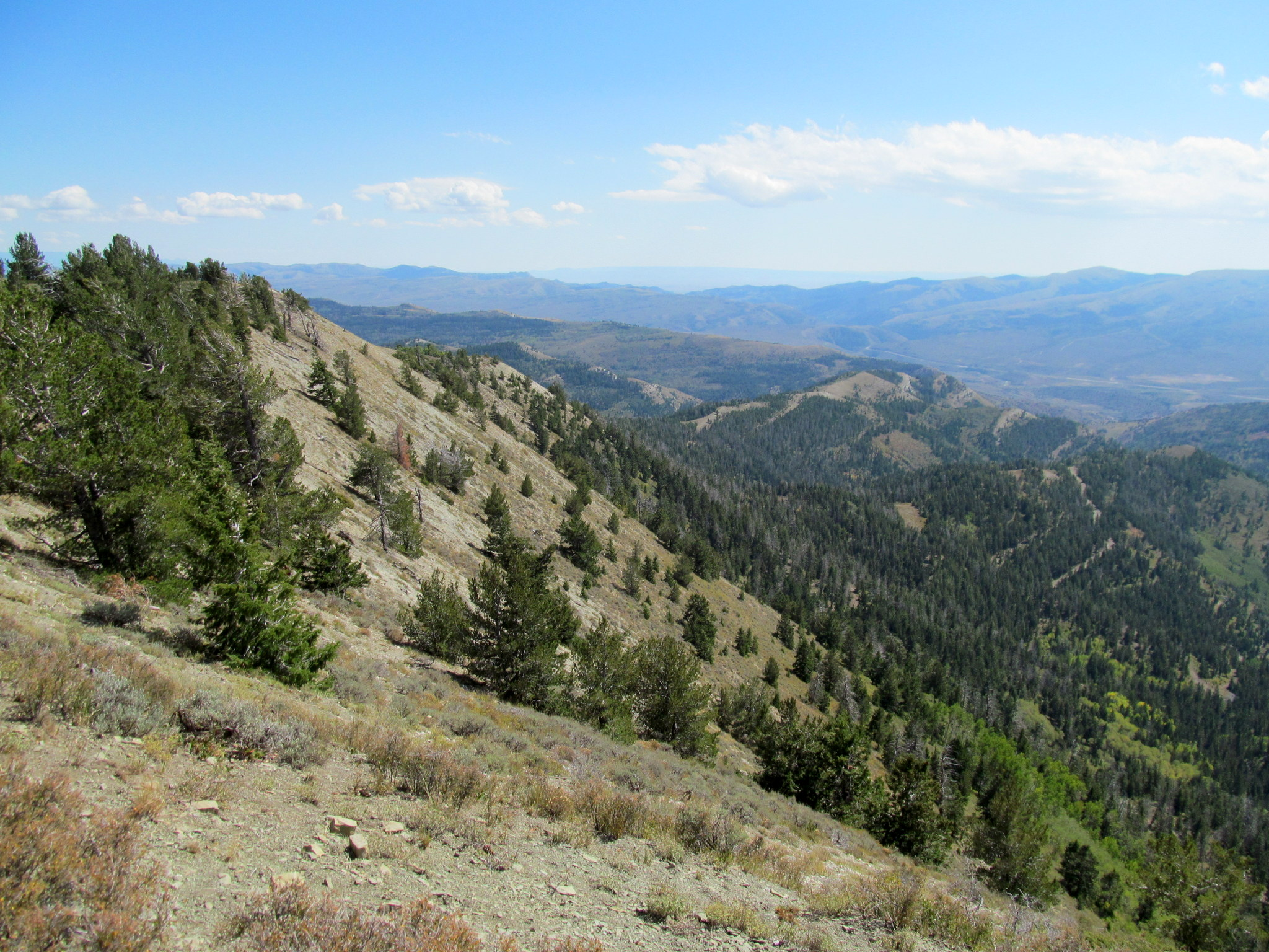 Photo: Southerly view from Cat Peak