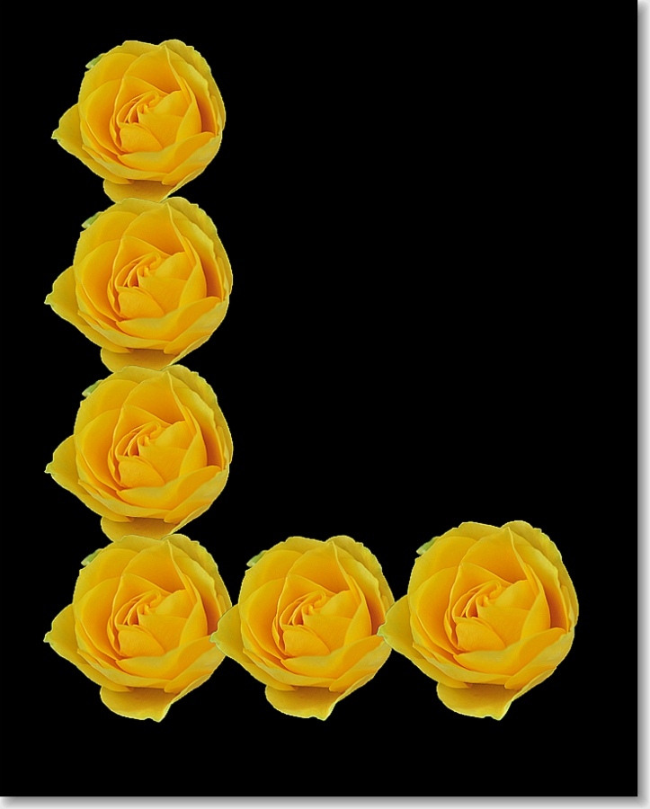 by Paul Wante - Typography Single Letters ( letter, l, yellow, typography, flower )