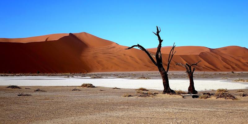 IL FASCINO DELLA NAMIBIA di Alessandro Pezzo