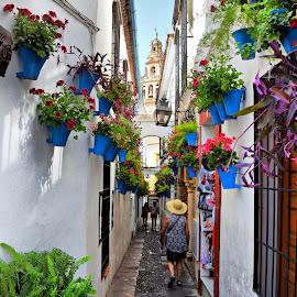 Cordoba, Spain by Francis Xavier Camilleri - City,  Street & Park  Street Scenes