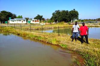 Photo: Likunganelo Cooperative Fish farm