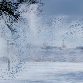 Blowing snow by Vicki Switala Riley - Landscapes Weather ( motion, winter, cold, freezing motion, sun, trees, outdoors, blue, white, freezing, snow, blowing snow, snowy, landscape )