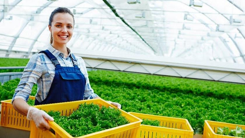 El innovador fungicida biológico de AgBiome amplía la oferta de soluciones.