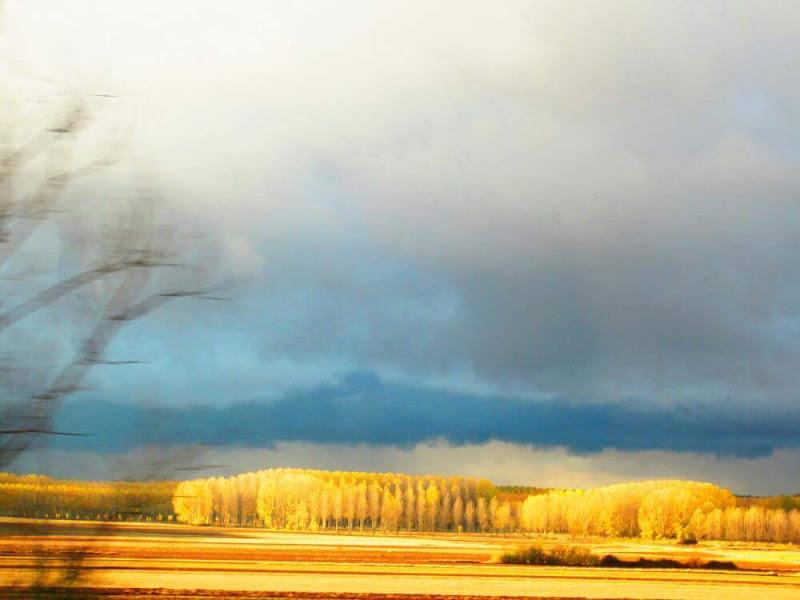 Amarillo on the road di noncecrisi