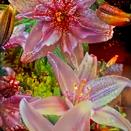 Lilies 11 by Cassy 67 - Digital Art Things