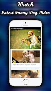Dog Funny Videos HD - náhled