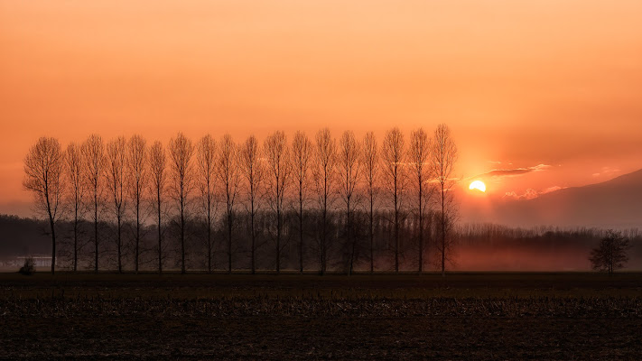 Fissando il sole di Barbara Surimi