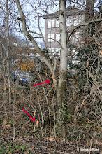 Photo: Markierung und Markierungspfahl im Grüngürtel entlang der Pragstraße B 10 gegenüber Polizei-/Wizemann-Areal