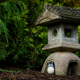 Totoro  by Todd Reynolds - Artistic Objects Toys