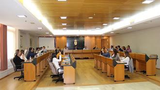 Votación durante la sesión plenaria extraordinaria celebrada en El Ejido.