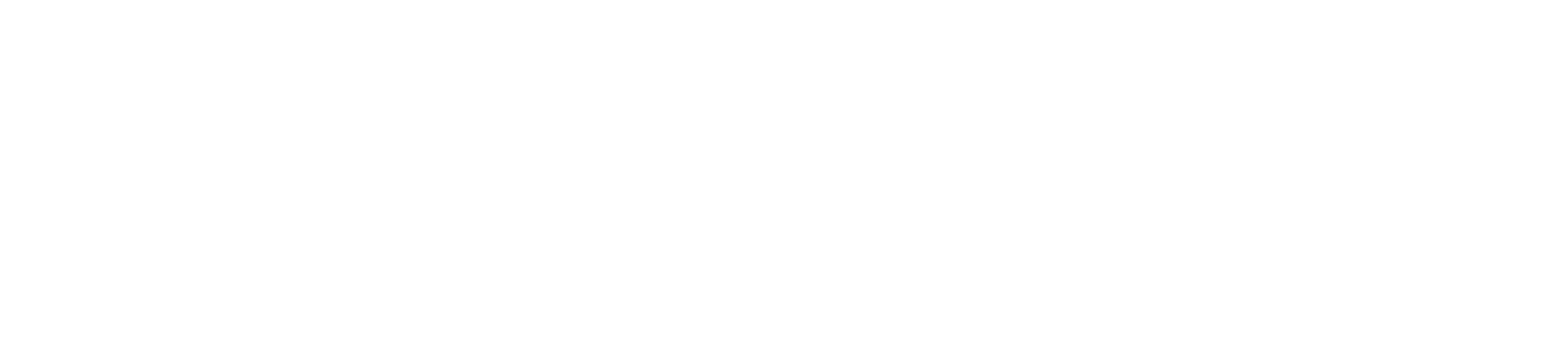 Sola logo - white
