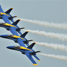 Banking Left by Benito Flores Jr - Transportation Airplanes ( f-18, air show, pilots, navy, blue angles, military, texas, fighters,  )