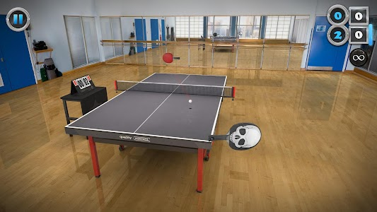 Table Tennis Touch v2.2.0420.2