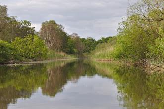 Photo: River Peene