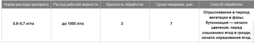 C:\Users\Антон\Desktop\Хорус\виноград.JPG