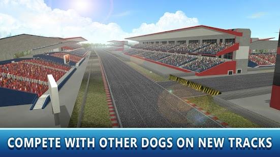 Dog Racing Tournament Sim 2 - náhled