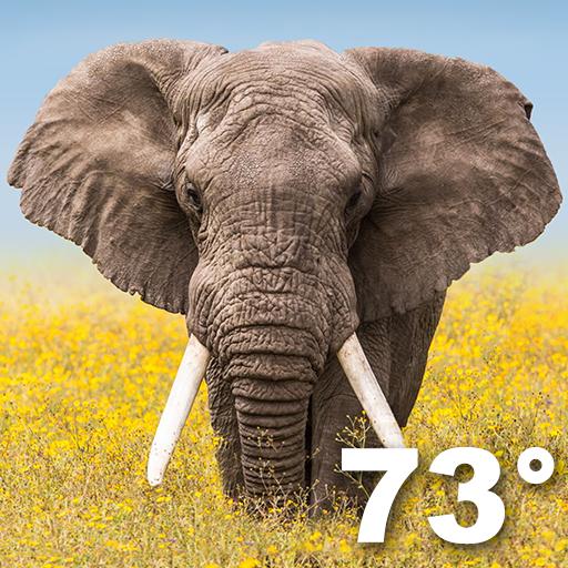 Wildlife Weather 天氣 App LOGO-APP開箱王