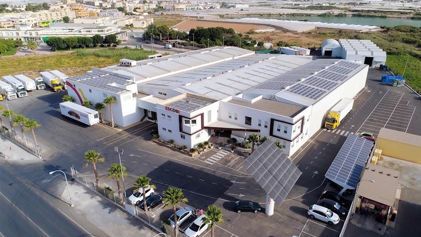 Proconsult, proyectos innovadores de autoconsumo solar