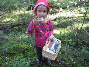 Photo: Sieninäyttelyn kokoaminen alkoi tästä. Annelin pikku-martta on löytänyt tatin.